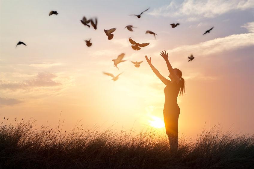 61706692 - woman praying and free bird enjoying nature on sunset background, hope concept